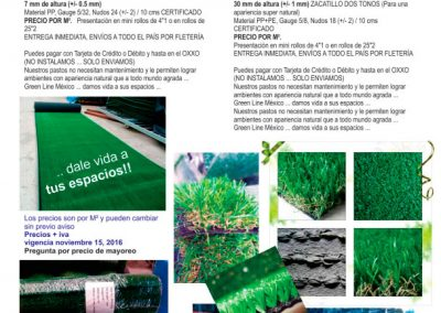 catalogo-pdf-follajes-04
