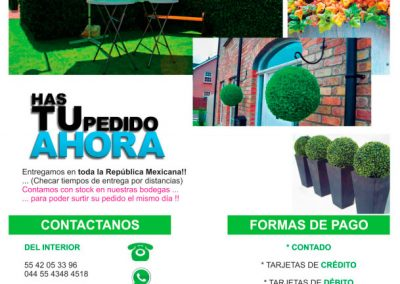 catalogo-pdf-follajes-08